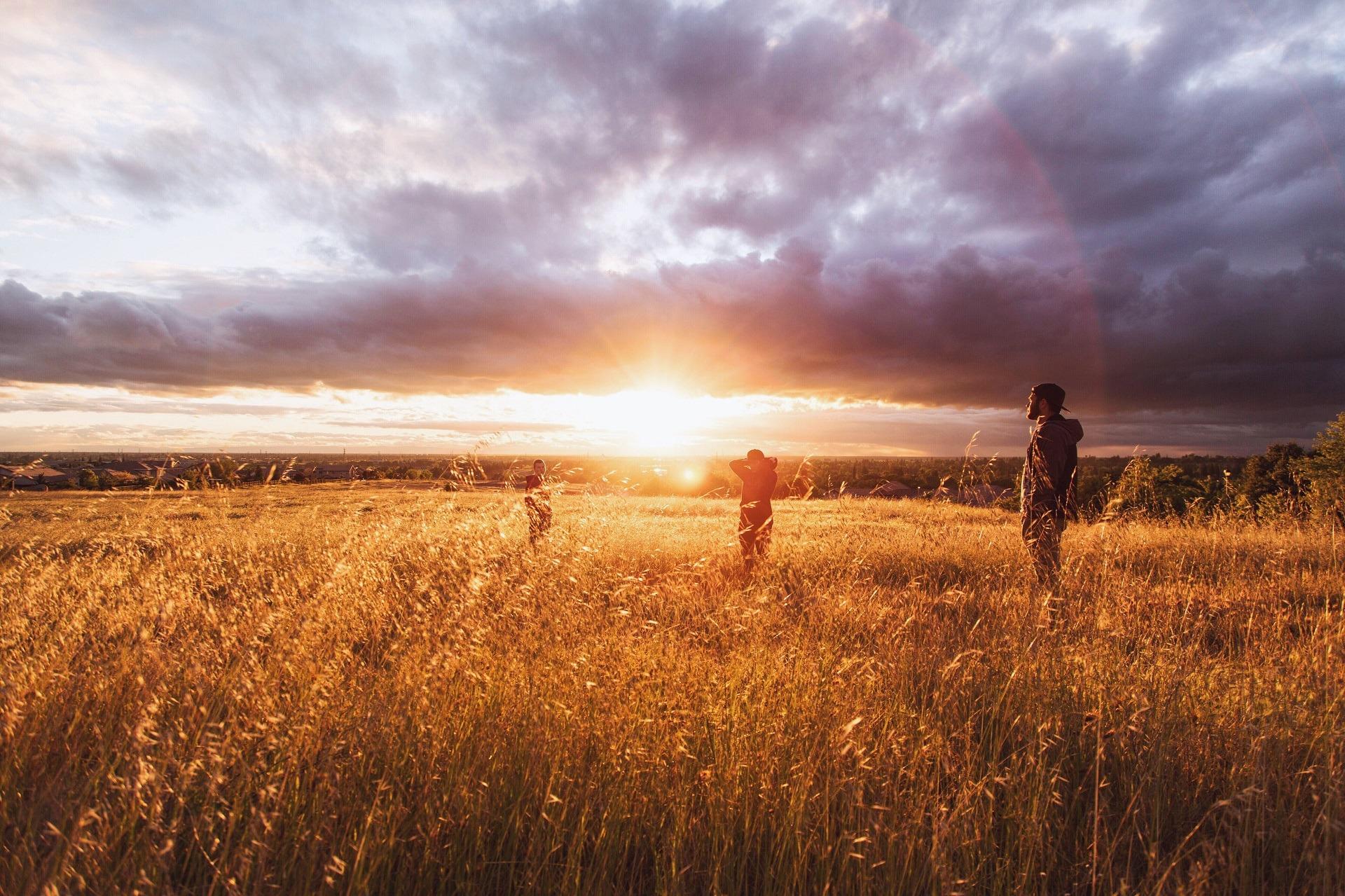 Drei Personen stehen in einem Weizenfeld und betrachten den Sonnenaufgang hinter dunklen Wolken.